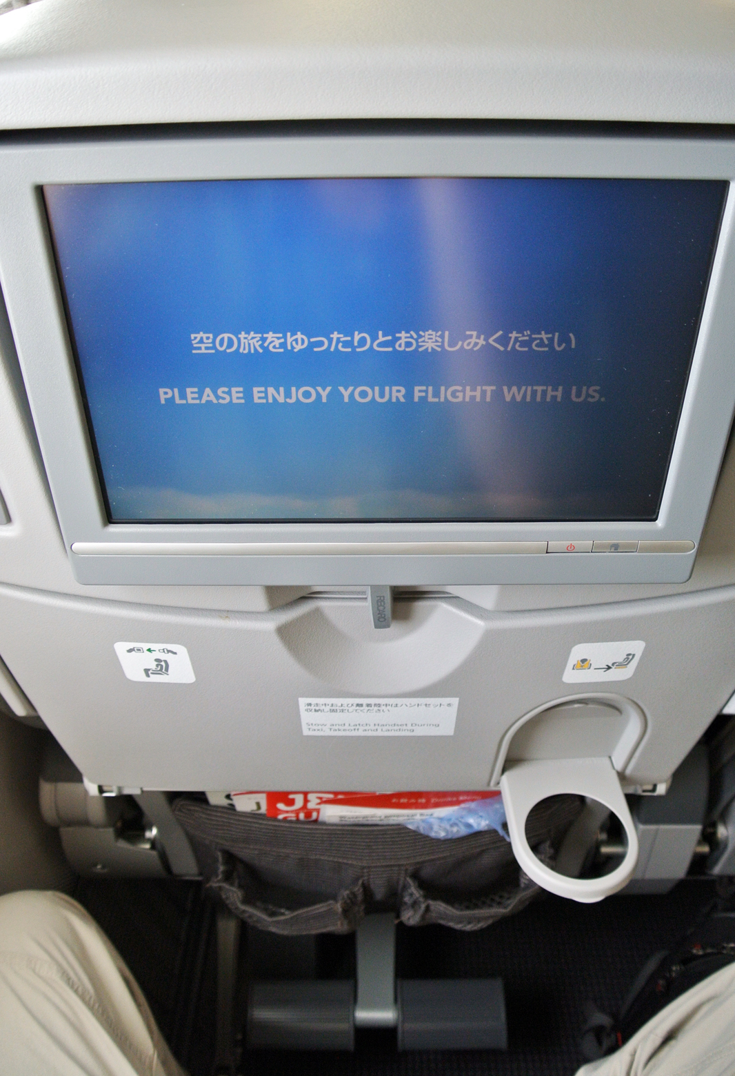 Japan Airlines 787.  Photo by the author.