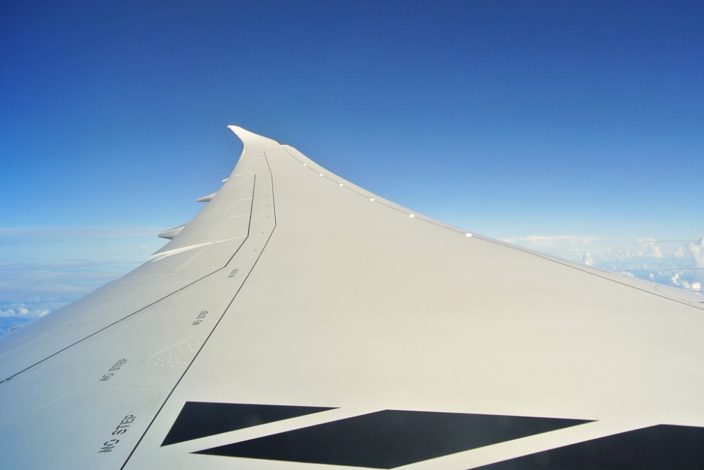 787 wing view