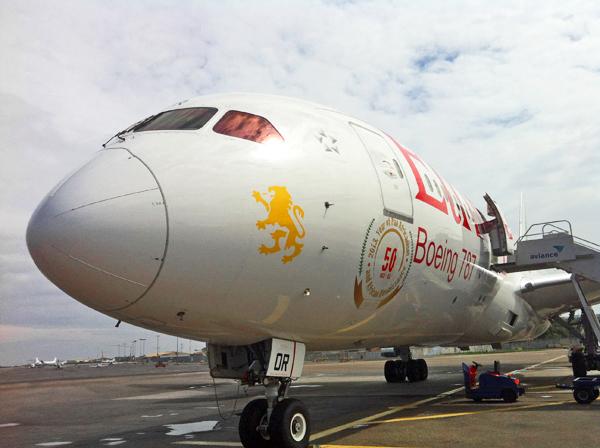 Ethiopian 787 2