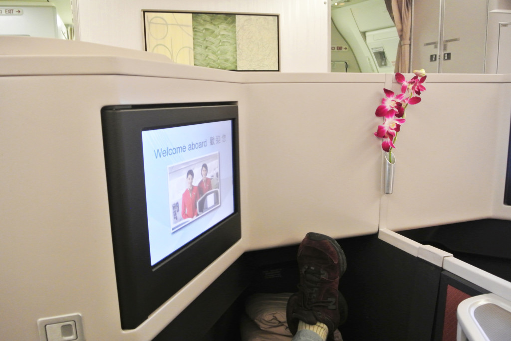 Cathay Pacific Orchid